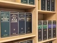 櫻井 晴季弁護士
