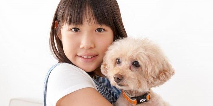 加入者増える「ペット保険」、飼い主に安心感…回避したい「3つの契約トラブル」