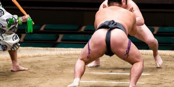 「公益認定取り消せ」問題噴出の日本相撲協会、収入100億円超で法人税等わずか15万円
